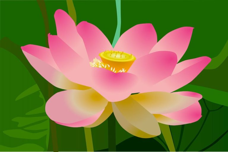 Desires and the Chakras on the Yoga Tantra Path