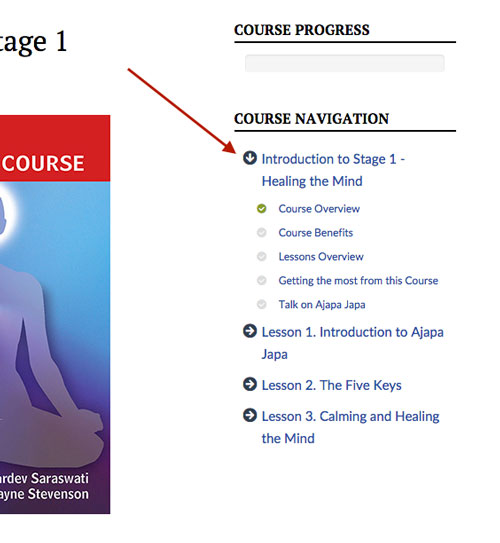 Course Support & FAQs