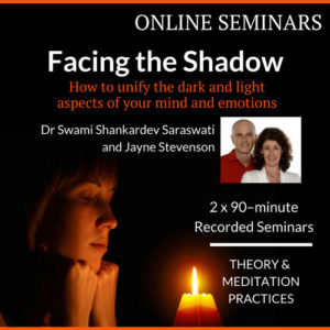 Ego, Shadow, Self – Which Is In Control?